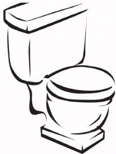 low-flow-toilet-227x300