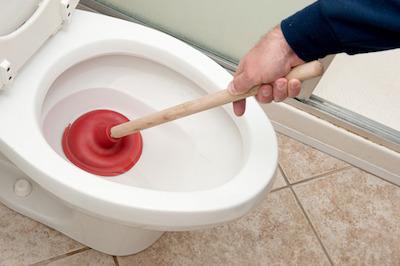 Tips To Help Eliminate Toilet Odors